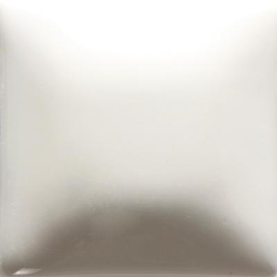 FN01 White